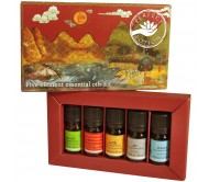Perfect Potion Five Element Oil Kit - 5 x 5ml